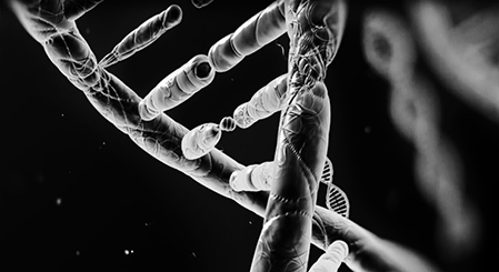 US Gov Backs Dangerous New Genetic Manipulation Approach