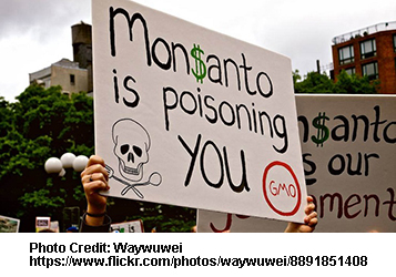 Monsanto Guilty Verdict Is Only Beginning